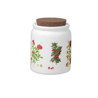 Tarro de la confitería de la granada jarra para caramelo