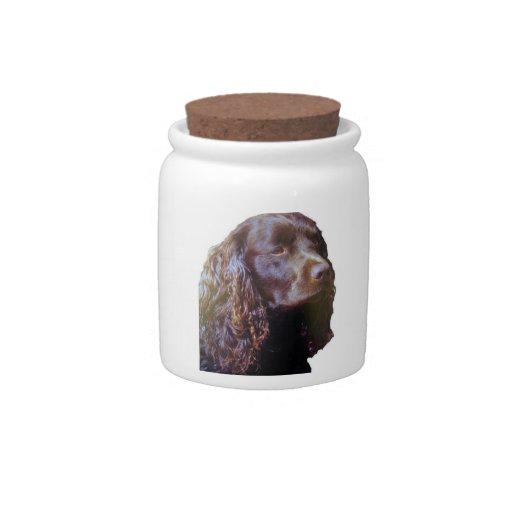 Tarro de la invitación del perro de aguas jarras para caramelos