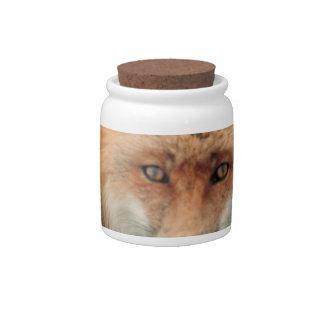 Tarro del caramelo de la especie del Fox Platos Para Caramelos