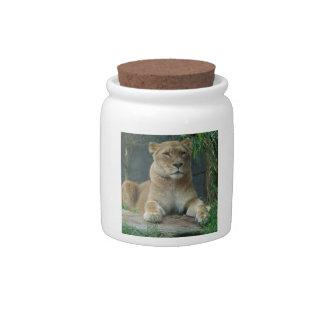 Tarro del caramelo de la leona jarras para caramelos