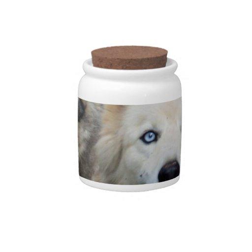Tarro del caramelo de la manada de lobos jarras para caramelos
