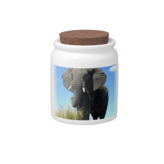 Tarro del caramelo del elefante africano plato para caramelo