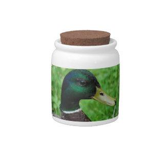 Tarro del caramelo del pato silvestre jarras para caramelos