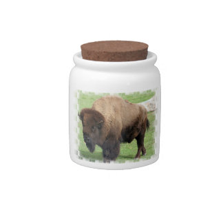 Tarro norteamericano del caramelo del bisonte plato para caramelo