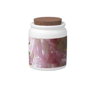 Tarro rosado del caramelo de las flores de cerezo platos para caramelos
