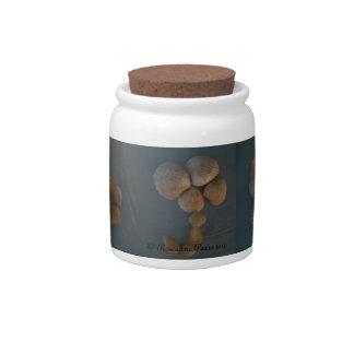 Tarro-ShellUmbrella del bote/del caramelo. Peras d Plato Para Caramelo