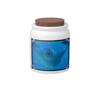 Tarro subacuático del caramelo de la pastinaca jarra para caramelo