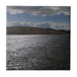 Tarryall Reservoir Tiles