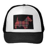 Tartán del perro del escocés gorras