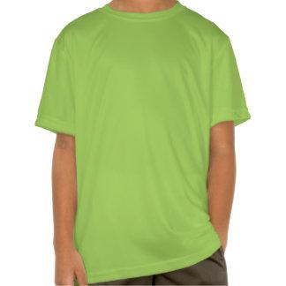 Tartán escocés de la falda escocesa de la tela camiseta