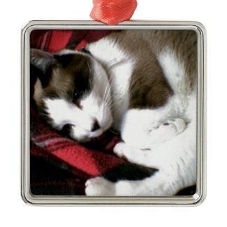 tartan kitty snoozing away square metal christmas ornament