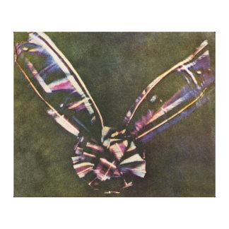 Tartan Ribbon First Known Color Photograph Canvas Print