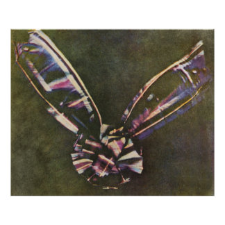 Tartan Ribbon First Known Color Photograph Poster
