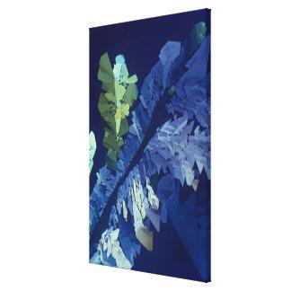 Tartaric Acid Crystals 2 Canvas Print
