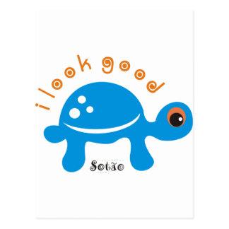 tartaruga postcard