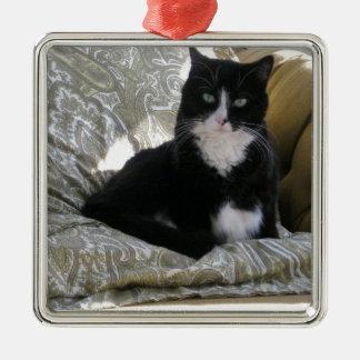 Tasha el gato del smoking adorno cuadrado plateado