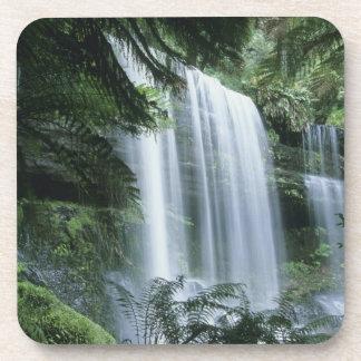 Tasmania, Mt. Field National Park, Russell Falls Drink Coaster