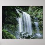Tasmania, Mt. Field National Park, Russell Falls Print