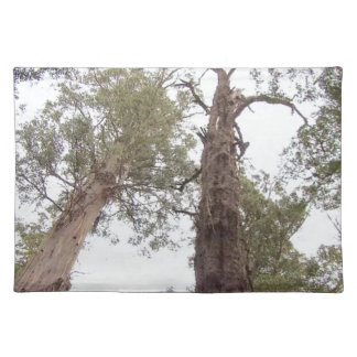 Tasmania Old trees reach for the sky Cloth Placemat