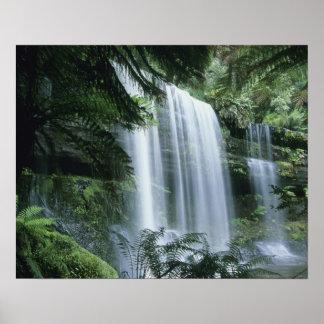 Tasmania, parque nacional del campo del Mt., caída Póster