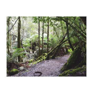 TASMANIA TREES MOUNT FIELD NATIONAL PARK AUSTRALIA CANVAS PRINT