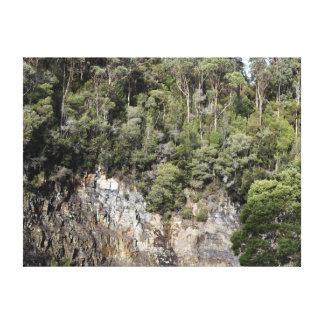 TASMANIA TREES TARKINE NATIONAL PARK AUSTRALIA CANVAS PRINT