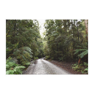 TASMANIA WILDERNESS NORTH WEST AUSTRALIA CANVAS PRINT