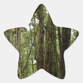 TASMANIA WILDERNESS TREE FOLIAGE AUSTRALIA STAR STICKER