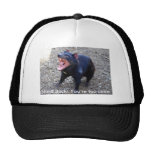 Tasmanian Devil h--  Stand Back! You're too close. Mesh Hats