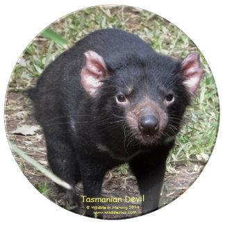 Tasmanian Devil Plate