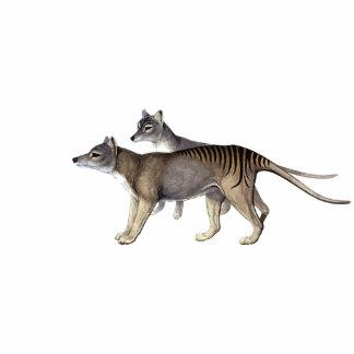 Tasmanian Tiger Cutout Magnet/Sculpture