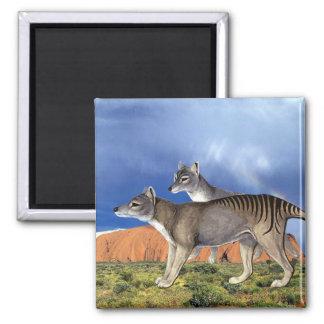 Tasmanian Tiger Magnet