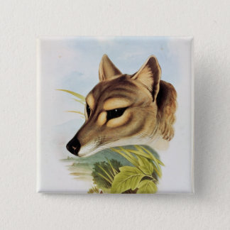 Tasmanian Wolf or Tiger Button