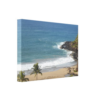 Taste of Hawaii Gallery Wrapped Canvas