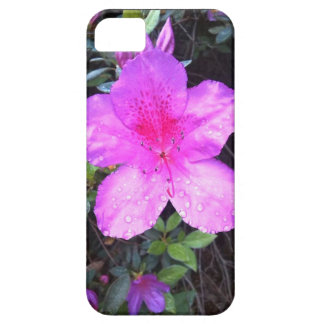 Taste of Nature- Flowers in the rain iPhone SE/5/5s Case