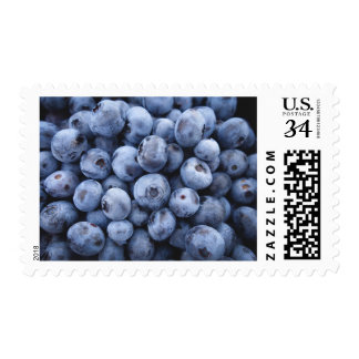 Tasty Blueberries Blue Fruit Stamp