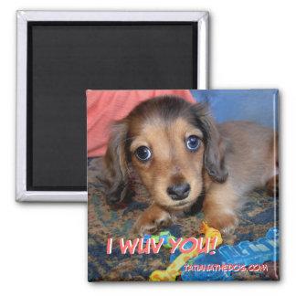 TatianaTheDog puppy magnet -  I WUV YOU!