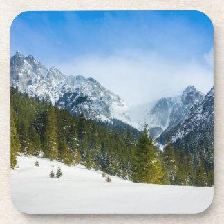 Tatry, paisaje de la montaña, invierno, nieve posavaso