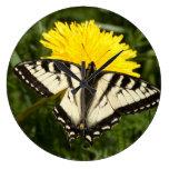 Tattered Swallowtail Clocks