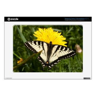Tattered Swallowtail Samsung Chromebook Skin
