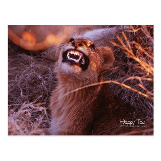 Tau feliz, león Cub sonriente Tarjeta Postal