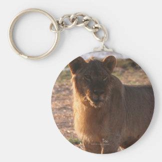 Tau, Lion, Photo Basic Round Button Keychain