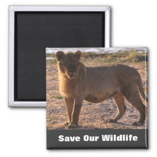 Tau Save Our Wildlife 2 Inch Square Magnet