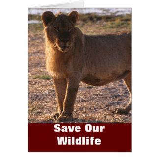 Tau Save Our Wildlife Greeting Card