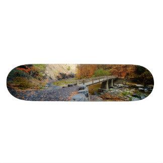 Taughannock Falls State Park Skateboard