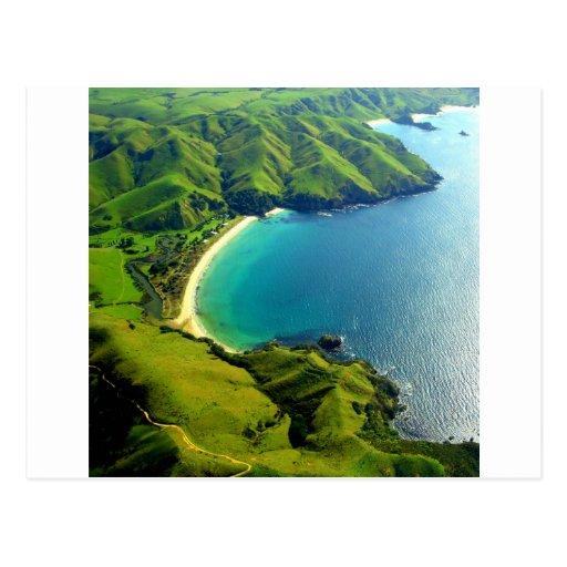 Taupo Bay, New Zealand Postcard