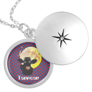 Taureau 21 avril outer 20 May collier Silver Plated Necklace