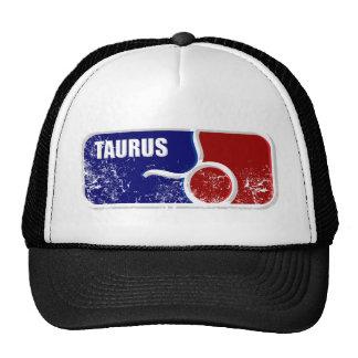 taurus_dd_used.png trucker hat
