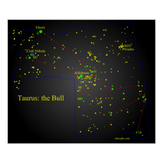 Taurus the Bull constellation Posters