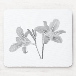 Tawny Day Lilly Digital Drawing Mouse Pad